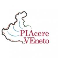 logo_PIAcere Veneto